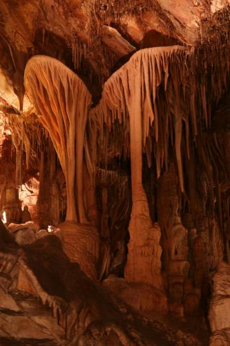parachute shield formation of Lehman Caves, Great Basin National Park, Baker, Nevada