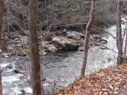 Guest River in the Jefferson National Forest