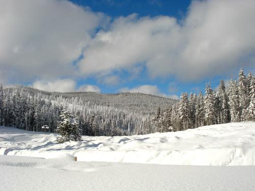 Snow around Lolo Pass, US-12, Nez Perce-Clearwater National Forests