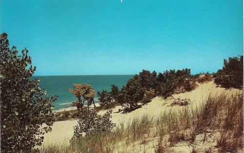 Dunes and Lake Michigan at Indiana Dunes State Park Postcard