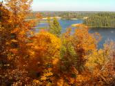 AuSable River from a bluff in the Huron-Manistee National Forest