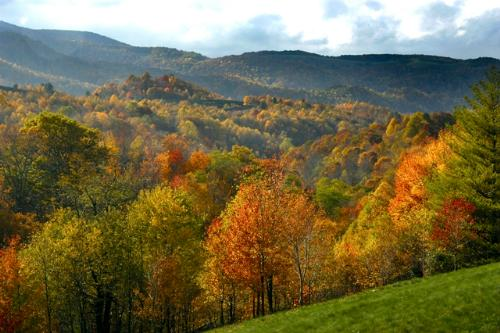 Jefferson National Forest in autumn