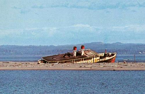 S.S. Catala floating hotel boat, beached in Ocean Shores, Washington postcard